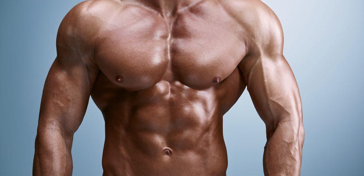 Czy glutamina działa ochronnie na tkankę mięśniową?