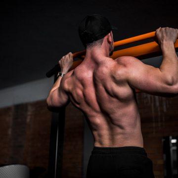 Prawidłowy trening mięśni grzbietu – jak go wykonać?
